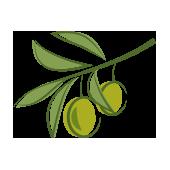 owoce ikona